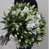 51 белая лилия