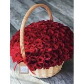 Корзина из 51 розы Фридом