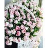 Корзина из 101 розового тюльпана